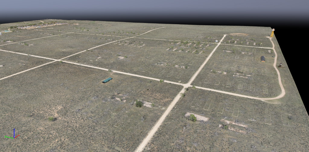Amache point cloud
